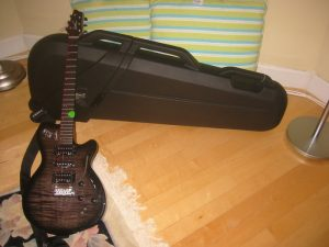 Godin Guitar and case